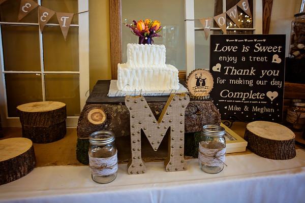 Mike and Meghan Wedding 2/7/2015